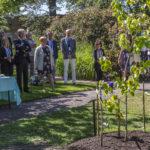Island Games Planterar Näsduksträd I Botan